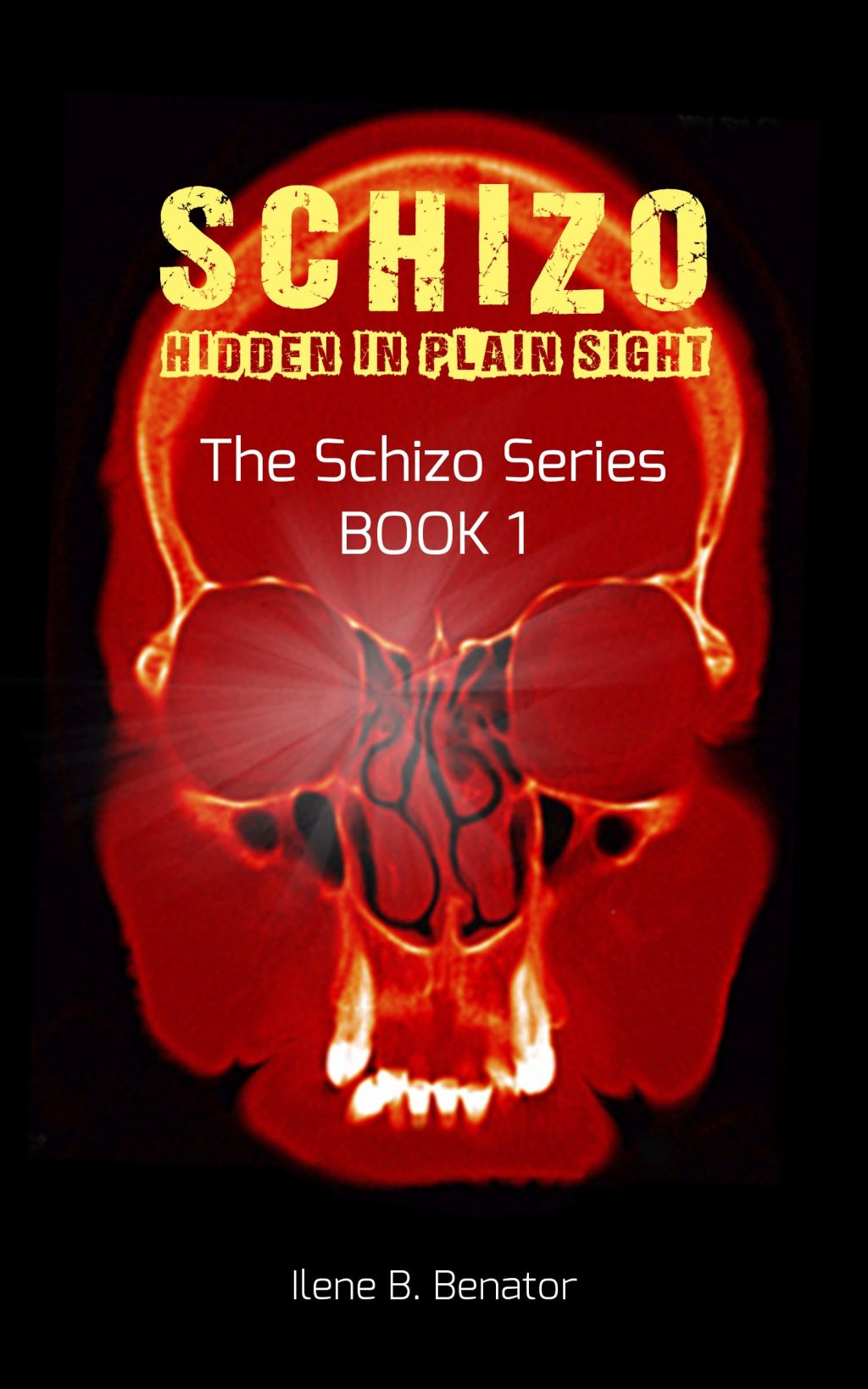 Schizo: Hidden in Plain Sight By Ilene B. Benator