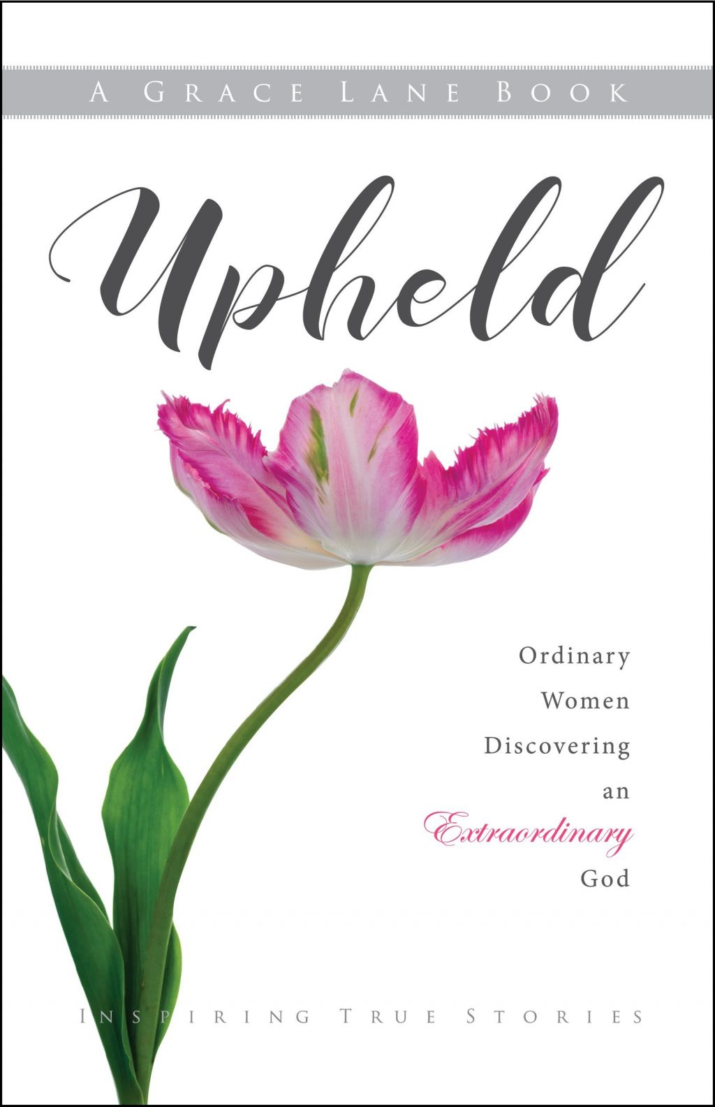 Upheld by Grace Lane Cover Reveal